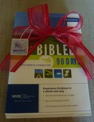 Bible in 90 Days on MomsToolbox