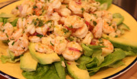 Citrus Shrimp Ceviche with Avocados & Lemon Thyme Pesto Drizzle