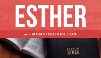 Daily Devotion: Esther Reflection Questions