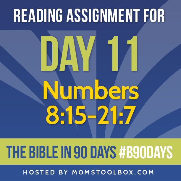 Bible in 90 Days Reading Assignment: Day 11 | MomsToolbox.com
