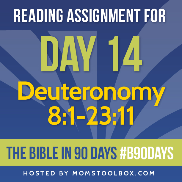 Bible in 90 Days Reading Assignment: Day 14 | MomsToolbox.com
