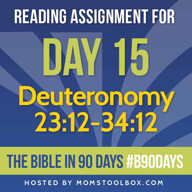 Bible in 90 Days Reading Assignment: Day 15 | MomsToolbox.com