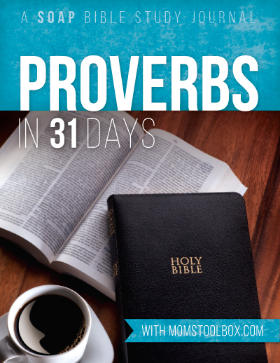 Proverbs in 31 Days ebook